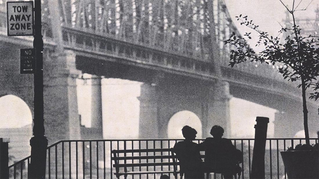 Woody Allen Cinematography Analysis || Deconstructing Cinematography || Autumn Durald